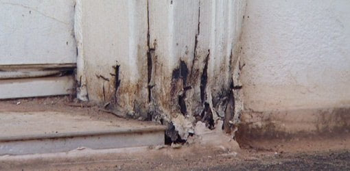 How To Repair Rotten Wood Today S Homeowner