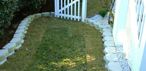 How To Keep Sod Lawns Alive After Planting Today S Homeowner