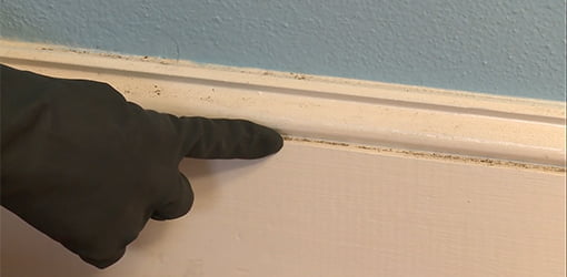 How To Clean Baseboards In 2 Easy Steps Today S Homeowner