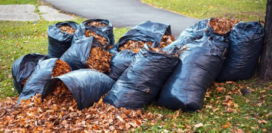 Bags of leaves in a yard