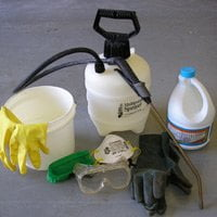 Equipment for cleaning mold