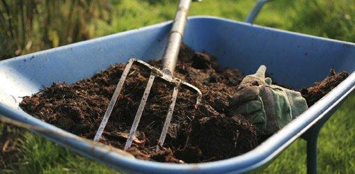 Mulch in wheelbarrow