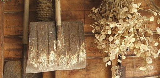 Shovel in potting shed
