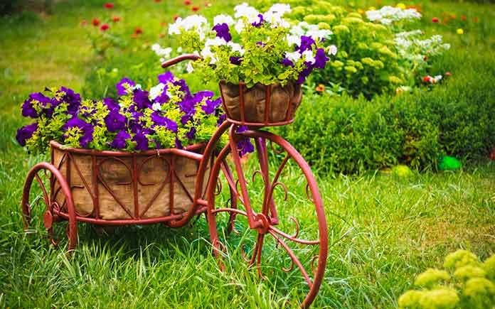 Flower pots on wheels