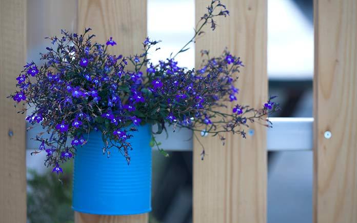 Flower pot with purple flowers