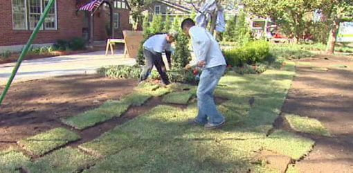 How To Lay Sod And Plant Grass Seed In Your Yard Today S