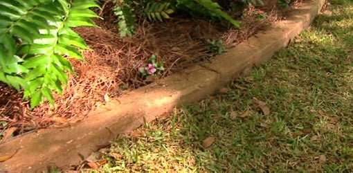 DIY concrete curbing around flower bed.