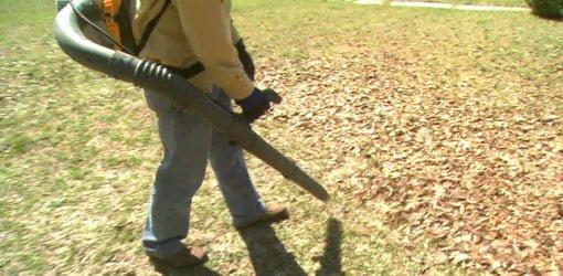 Using gas powered backpack leaf blower in yard.