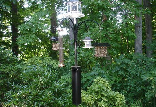 How To Make A Squirrel And Raccoon Bird Feeder Baffle