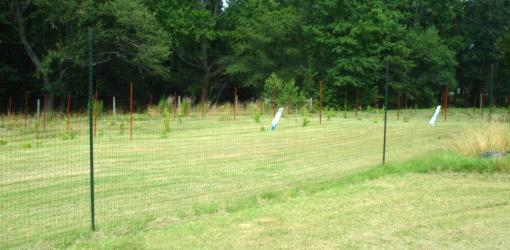 How To Install A Deer Proof Fence Around Your Yard Or Garden