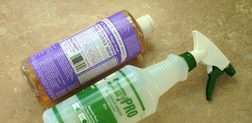 Spray bottle and natural soap