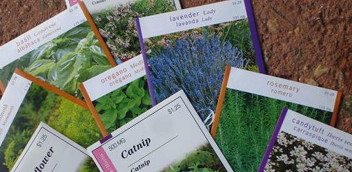Seed packets on containers