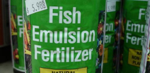 Bag of fish emulsion fertilizer