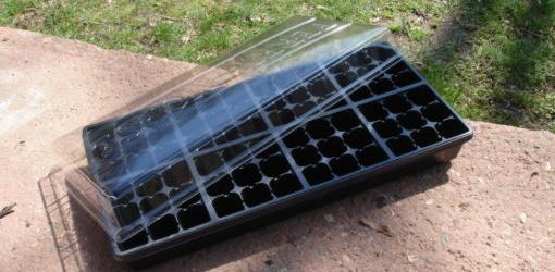 Plant tray container with clear plastic lid
