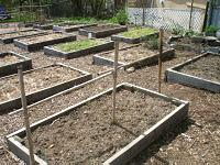 Raised planting beds with trellises