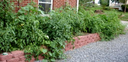Raised bed made from stackable retaining wall blocks