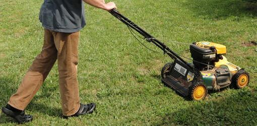Mowing grass in yard with lawn mower