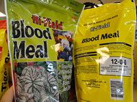 Blood meal fertilizer