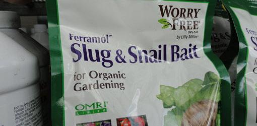 Bag of organic slug and snail bait made with iron phosphate.