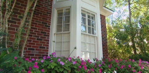 Windows with replacement sash
