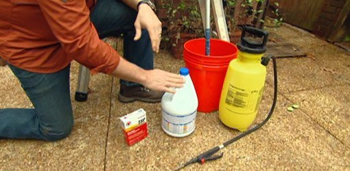 Cleaning supplies for removing mold and mildew
