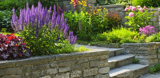 Flower beds around stone wall and steps.