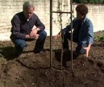 Danny Lipford and Tricia Craven Worley next to newly planted tree.