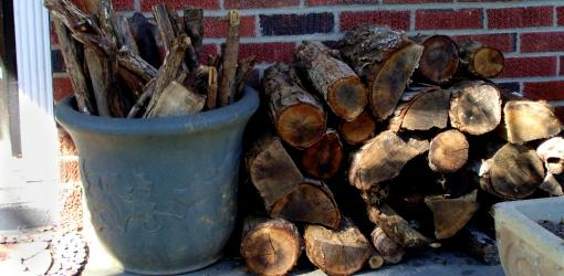 Firewood stacked and ready to burn.