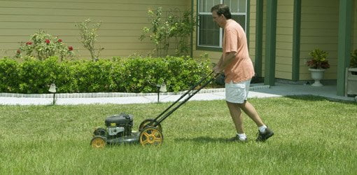 Push mowing the lawn burns calories.