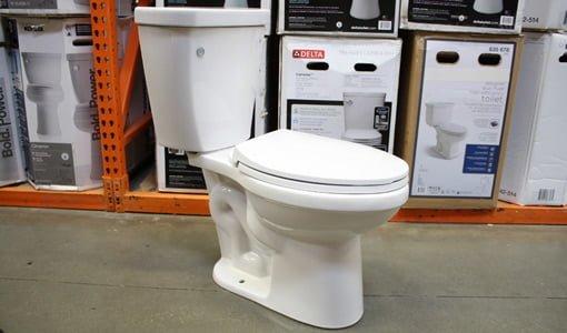 Delta Brevard toilet.