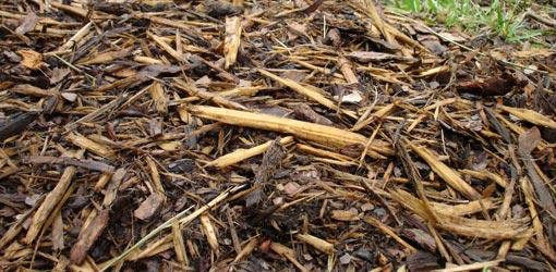 Shredded hardwood mulch.
