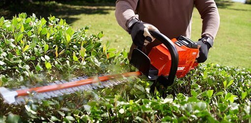 ECHO Cordless Hedge Trimmer cutting hedge.