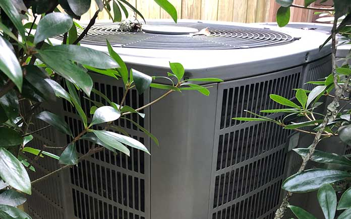 American Standard air conditioner surrounded by bushes that needs to be cleaned