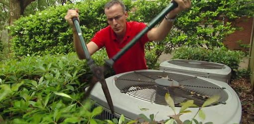 Man trimming shrubs around AC unit.