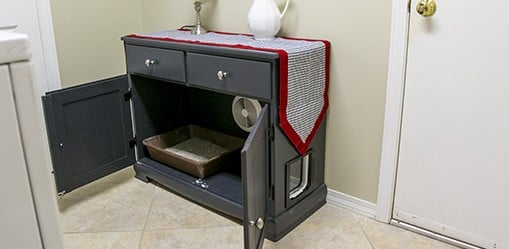 cabinet for a cat's litter box