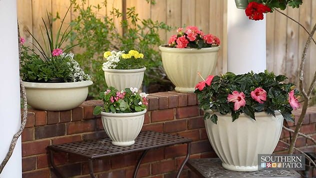 southern-patio-packs
