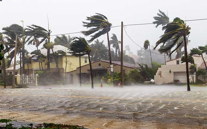 Hurricane winds blow palm trees as flooding takes over streets
