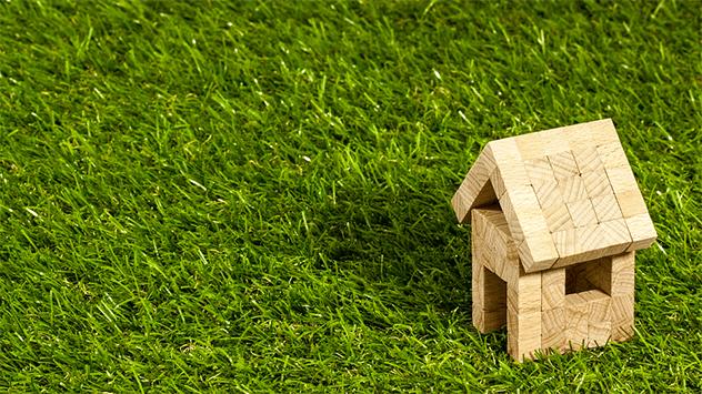 lawn grass absorb sound