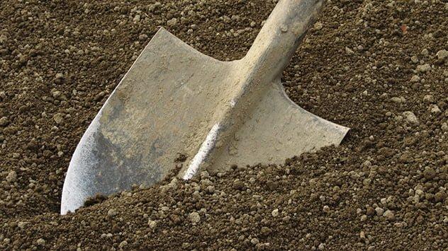 till soil