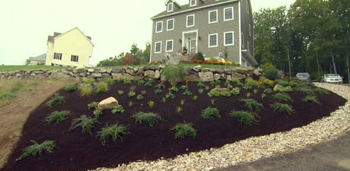 Completed hillside landscaping project