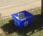 Recycling bin at curb