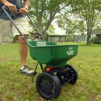 Using spreader to fertilize lawn