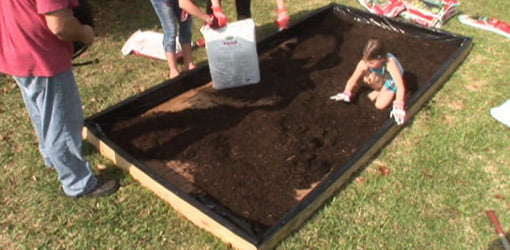 Planting raised bed