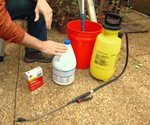 Products and sprayer used to treat house for mold.