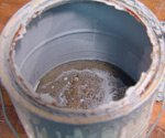 Old can of paint with skim on top.