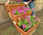 Flowers in containers on step stringers.