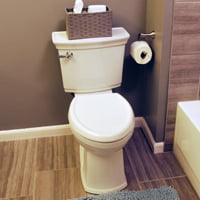 New toilet in remodeled bathroom.