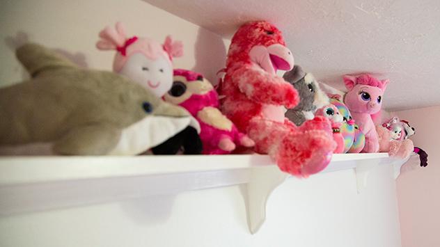 stuffed animals on a shelf.