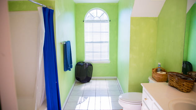 Lime Green Walls in Bathroom Before Update