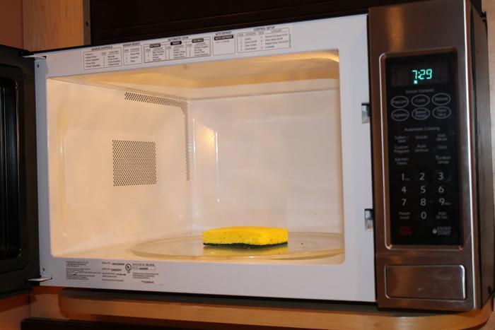 clean-sponge-in-microwave